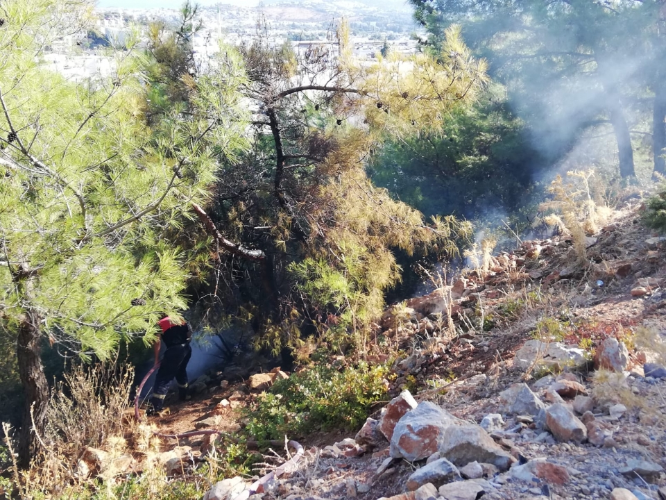 Çırkan'da ormanlık alanda çıkan yangın söndürüldü