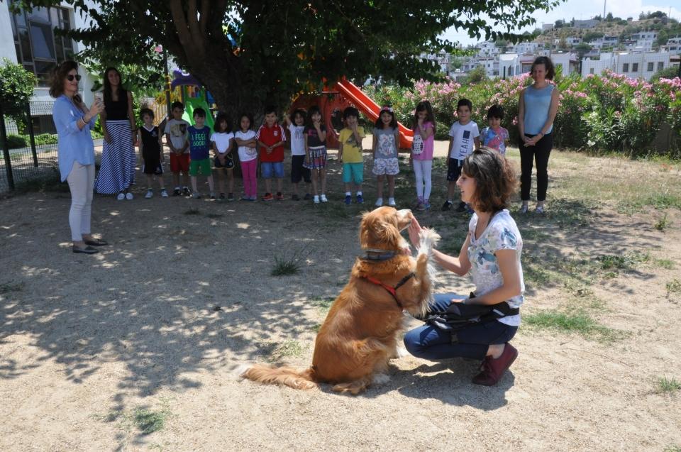 Bu çocuklar köpeklerin dilinden anlıyor!