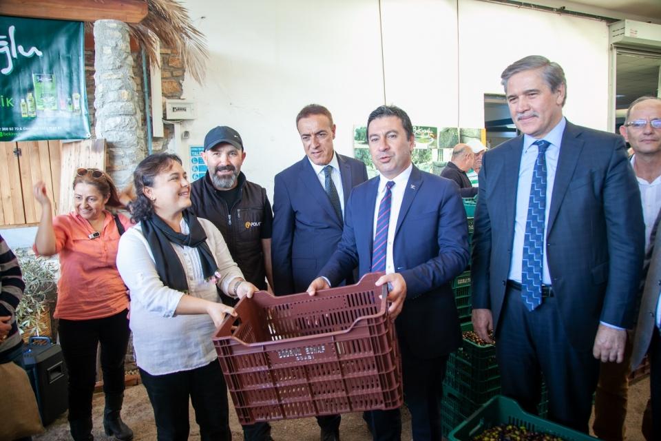 BODRUM ZEYTİNYAĞINA 'KALİTE' DOKUNUŞU