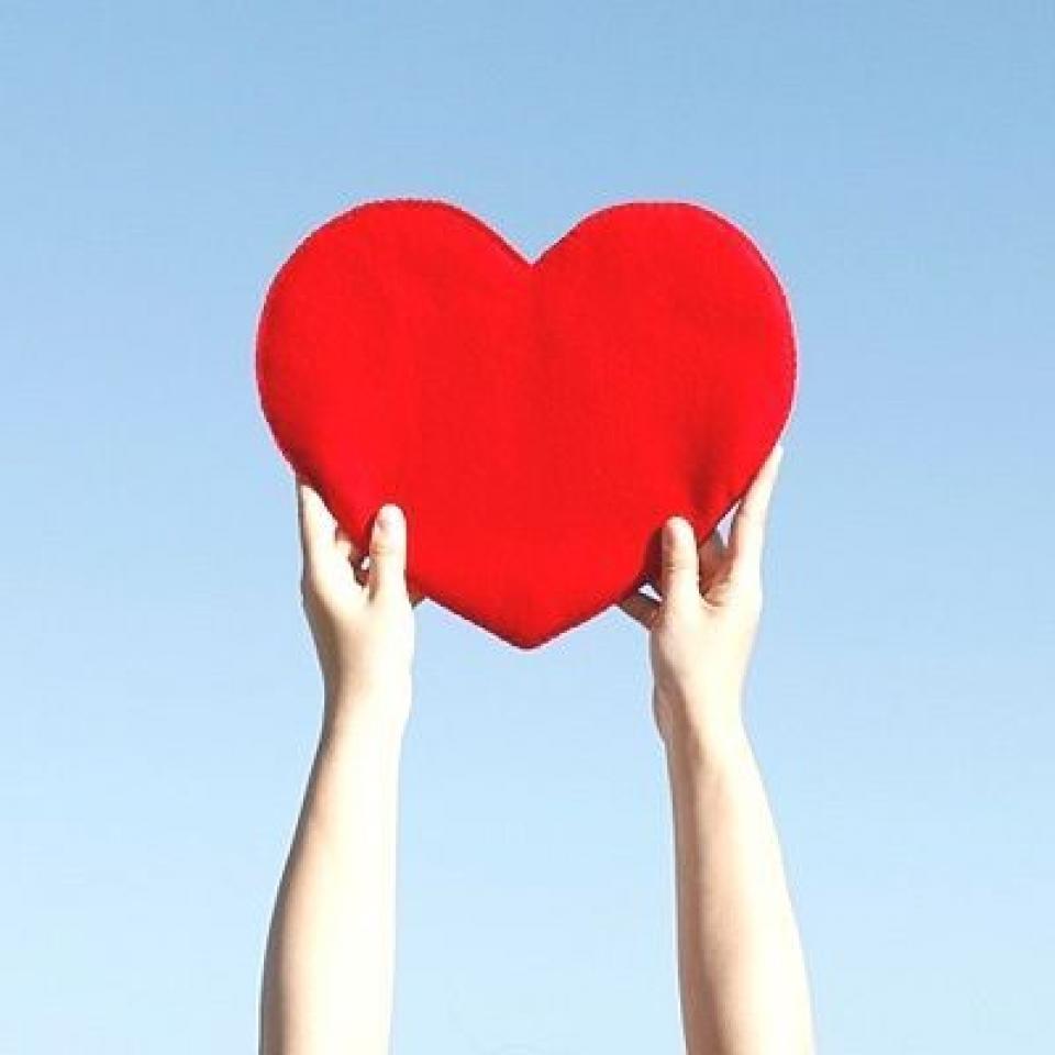 """Kardiyoloji Uzmanı Doktor Nejat Sönmez """"kalbimizi"""" anlatacak"""