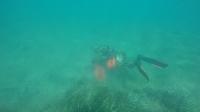 Ortakent deniz dibi temizliğinde neşeli anlar