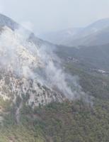 5 alanda çıkan orman yangınları, havadan ve karadan müdahaleyle kontrol altına alındı