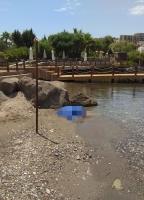 Bodrum'da serinlemek için denize giren kadın boğuldu