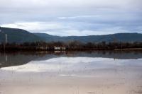 Muğla'da kuvvetli yağış etkili zarara neden oldu
