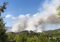Muğla'daki orman yangınına havadan müdahale