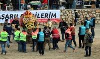 Bodrum Deve Güreşi Festivali'nde 150 deve mücadele etti