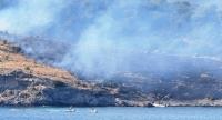 Bodrum'da Büyük Ada'da çıkan yangın söndürüldü