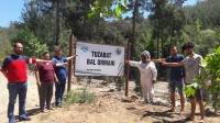 Milas'ın Bal Ormanlarında, Maden Ocağı Tehlikesi…