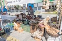 Oasis Doğal Ürünler Pazarı yoğun ilgi gördü