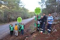 Fethiye Belediyesi 506 ağacın kesilmesini protesto etti.