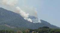 2 hektar orman alanına zarar veren yangın kontrol altına alındı