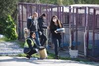Sokak hayvanlarının fedakar dostları
