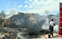 Bodrum'da otluk yangını