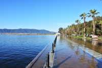 Aşırı yağışlar Köyceğiz Gölü'nü taşırdı