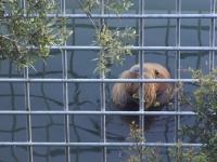 Yunus Parkı'nın kapatılması için 65 bin imzayla geliyorlar