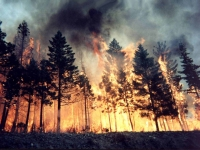 Yangınların çıkış nedeni dikkatsizlik ve ihmal!