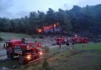 33 orman yangınında 16 hektar alan zarar gördü