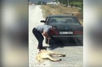 Otomobilin Arkasına Bağladığı Köpeği Sürükleyen Vicdansız Adam Yakalandı