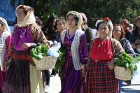 Milas Ot Festivali'ne yoğun ilgi