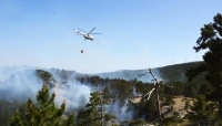 6 hektar ormanlık alan zarar gördü