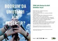 TEMA Vakfı Bodrum'da Aktif Gönüllüler Arıyor