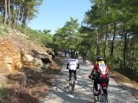 2. Bodrum Bisiklet Turu'nda 182  katılımcı ilçeyi bisikletle gezecek