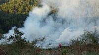 Orman ve kırsal alan yangın söndürülmesi hizmeti alınacak