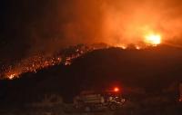 Yalıkavak'ta makilik yangını