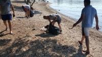 Adaboğazı Koyu'nda kıyı temizliği