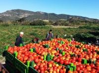 Kırsal alandaki turizm yatırımlarına hibe