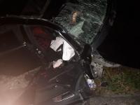 Devrilen otomobil direğe çarptı: 1 ölü, 1 yaralı