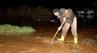 Muğla'da şiddetli yağış tarım arazilerini vurdu