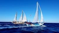 Bodrum açıklarında yelken açan tekneler, Leros-Gümüşlük etabında yarıştı