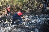 Devrilen kamyonetteki yangın ormana sıçradı