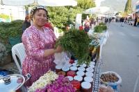 KOVİD-19'a rağmen Acı Ot Festivali