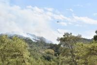Ormanlık alanda çıkan yangın, kontrol altına alındı
