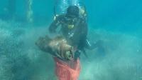 İki saatte denizden 235 kilogram atık çıkardı