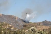 12 hektarlık makilik alanda yangın