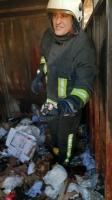 Bodrum'da yangın çıkan konteynerdeki kedi yavruları suni teneffüsle kurtarıldı